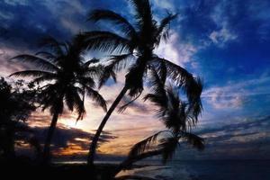 Digital art, paint effect, Sunset, Samana, Bahia Principe El Portillo photo