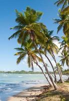 Caribbean sea and beach photo