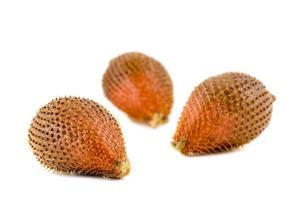 Sweet zalacca fruit on white background photo