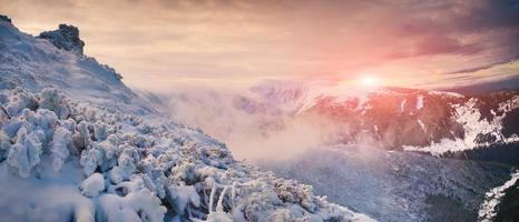 Colorful morning panorama in the Carpathian mountains