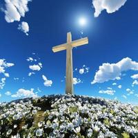 cross surrounded by flowers photo