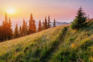 fantástico atardecer en las montañas de ucrania.