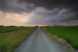 camino sombrío foto