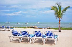 sillas de playa foto