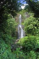 wailua falls (maui, hawaii) - panorama