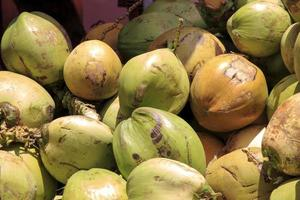 Bunch of fresh green Coconuts photo