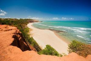 Beautiful beach with palm trees at Praia do Amor in Brazil  photo