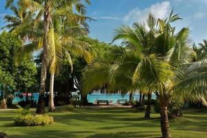 Beautiful place on tropical island photo