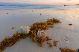 puesta de sol en la playa del caribe.