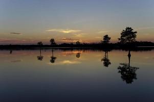Beautiful Florida Sunrise photo