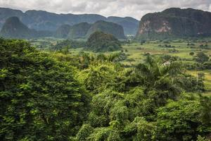 vista panorámica sobre el paisaje con mogotes en cuba