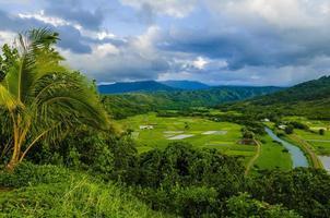 Con vistas a las granjas de taro en el valle de Hanalei, Kauai, Hawaii, EE. foto
