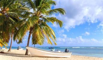 Caribbean beach in Dominican Republic photo