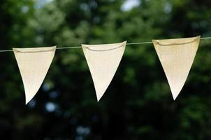 Flags of celebration photo