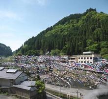 Celebración de la carpa koinobori voladora en Japón. foto