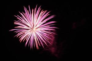 Pink Firework photo
