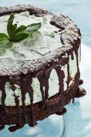 Whole cake of mint and chocolate - stock image photo