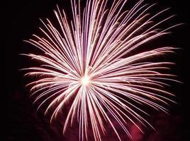 Pink Purple Firework photo