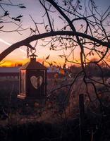 Heart-shaped lantern hanging from a tree at sunset