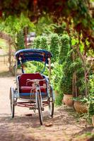 trishaw tailandés en el parque. foto