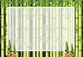 Beautiful nature bamboo frame template vector