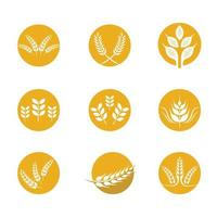 Wheat icon set vector
