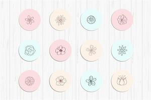 Beautiful Flower Doodles for Social Media vector