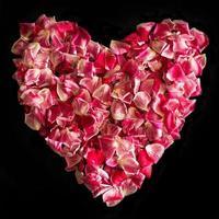 corazón de pétalos de rosa foto