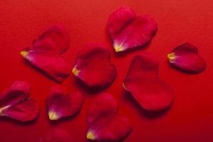 tema de San Valentín foto