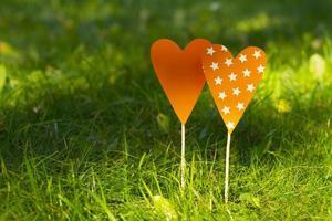 Hearts in the grass, valentine, declaration of love