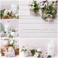 collage con flor de manzano foto