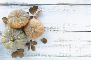 fondo de otoño y día de acción de gracias