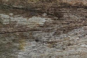 Old wood pattern texture photo