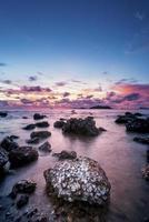 Hermosas conchas de ostra en la playa