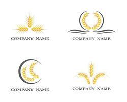 Wheat symbol set vector