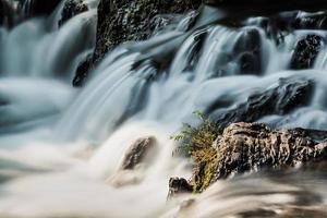 waterbel