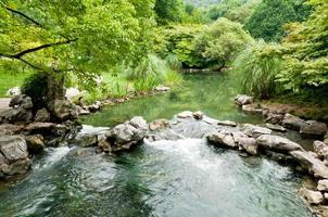 summer, the stream flowing water