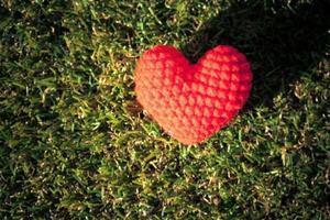 Heart on green grass background