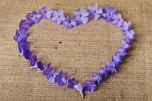 Flores azules en forma de corazón sobre fondo de arpillera foto