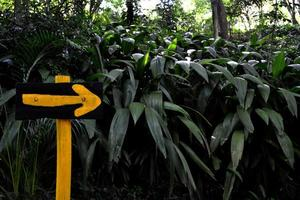 Go to this way