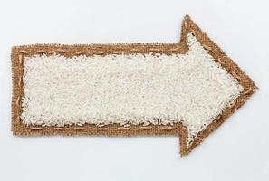 Pointer with rice grains
