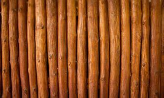 wood log background