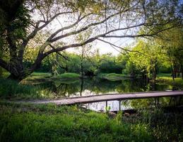 ponte sobre águas calmas