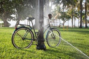 Bicycle watered with the lawn