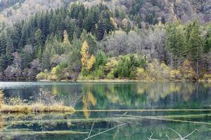 lago de bambú flecha, jiuzhaigou foto