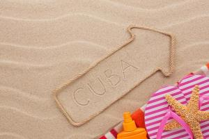 Cuba  pointer and beach accessories lying on the sand