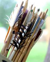 muchas plumas para la estabilización de la flecha