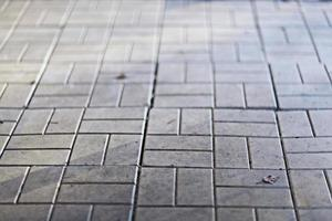texture flagstones photo