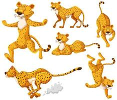 conjunto de personajes de dibujos animados de guepardo vector