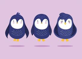 pinguïns cartoon antarctische vogel dier wildlife set